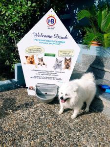 Pet Hotel amico degli animali