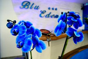 hotel-blu-eden59